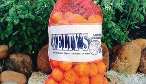 bag of mandarin oranges