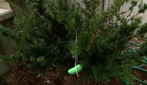 Irish Spring soap deer repellent