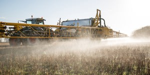 spraying glyphosate