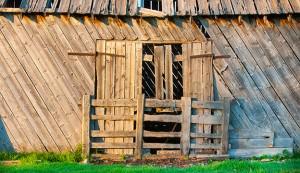 old barnwood