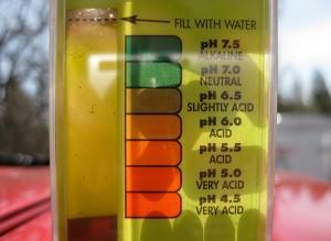 soil test
