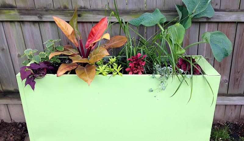 filing cabinet planter