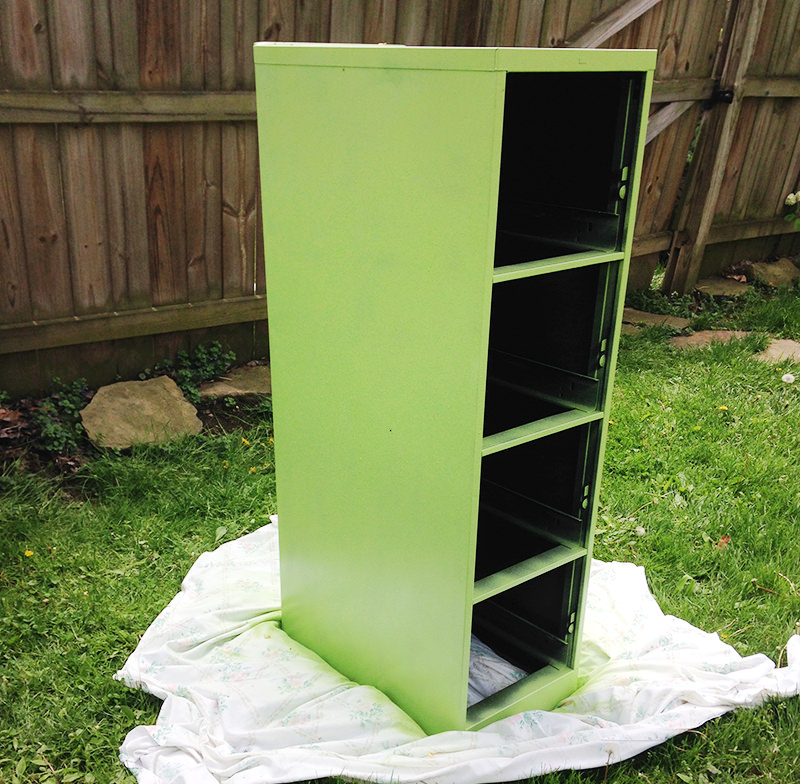 paint the cabinet