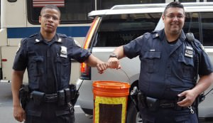 police capture bee swarm