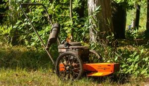 string trimmer mower lawn