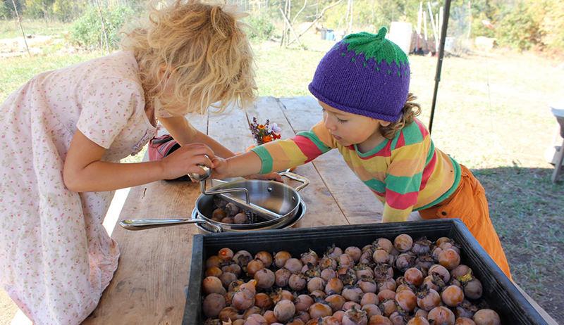 kids grinding nuts