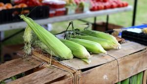 empty farmers market table