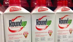 glyphosate is in Roundup