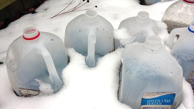 winter sowing, milk cartons, snow, seeds