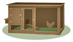 chicken coop coops