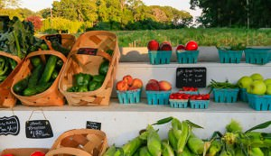 Roadside Farmstand with Local Vegetables and Fruit