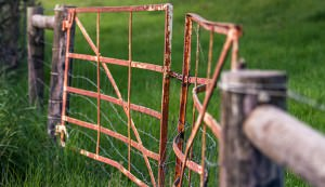 Clean up and fix your farm gate and fences.