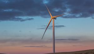 Wind turbines create wind energy.