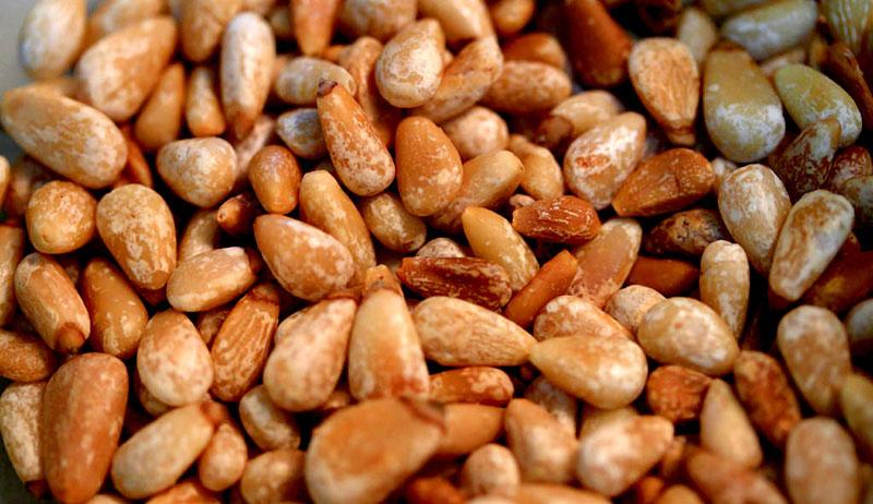 pine nuts grow farm