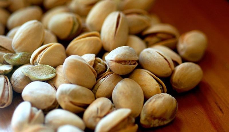 nuts grow farm pistachios