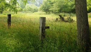 restore farmland