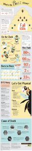 bees honeybees infographic