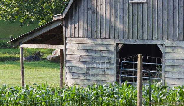 barn, crop