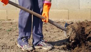 soil, shoveling, digging