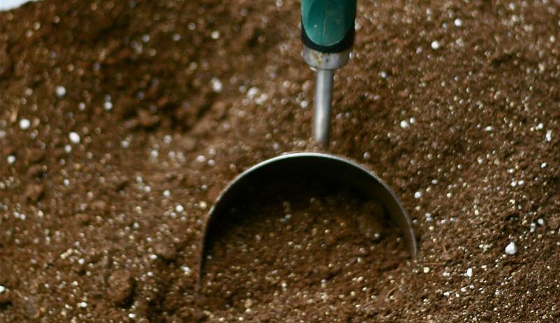 digging in soil