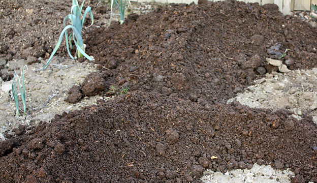 soil, organic matter
