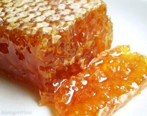 harvest honey comb