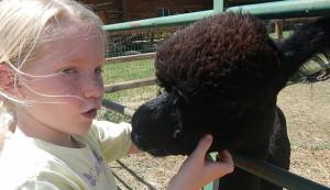 kid-friendly animals