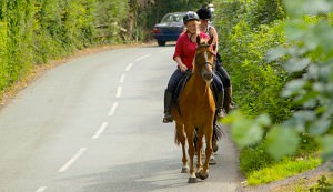urban horse trails