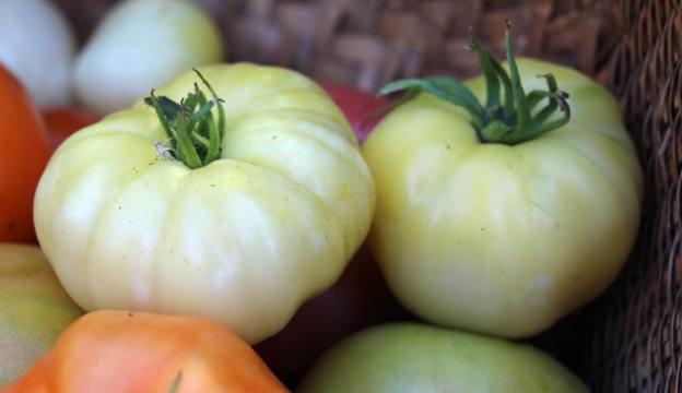 white vegetables, tomatoes