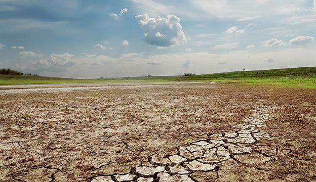 arable land is dwindling