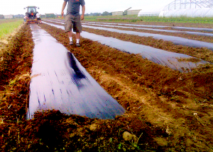 farm equipment plastic mulch layer