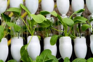 farm equipment hydroponics