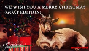 Christmas songs sung by goats