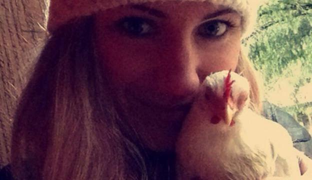 chicken enthusiast