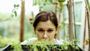 Young woman looking at plants in greenhouse, close-up