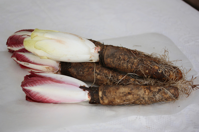 vegetables endives