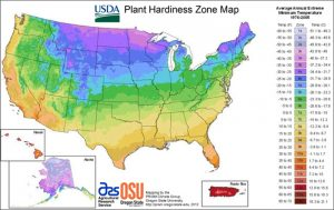 USDA hardiness zone zones map