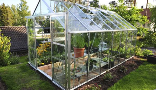 Growing In A Small Scale Greenhouse, How To Turn Your Basement Into A Greenhouse
