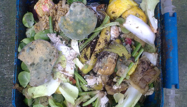 food waste, compost