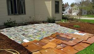sheet mulch