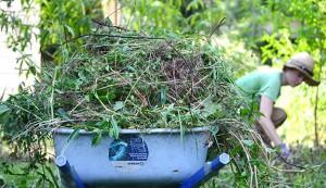 urban farming chores