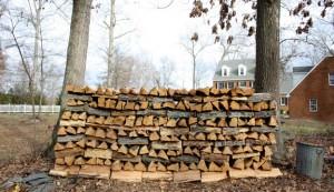 firewood wood