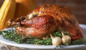 GMOs GMO Thanksgiving turkey