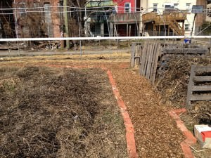 recycle, garden, compost