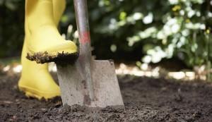 digging, digging tool, shovel