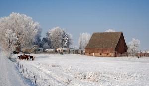 home, winter, snow