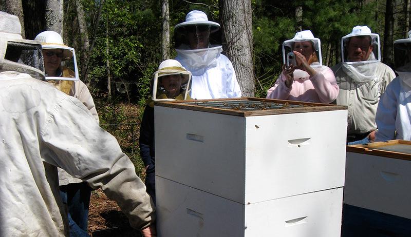 beekeeping club attrace customers