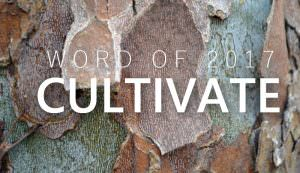 word of 2017: cultivate