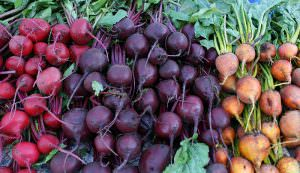 beets at farmers market