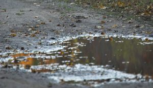 puddle on driveway